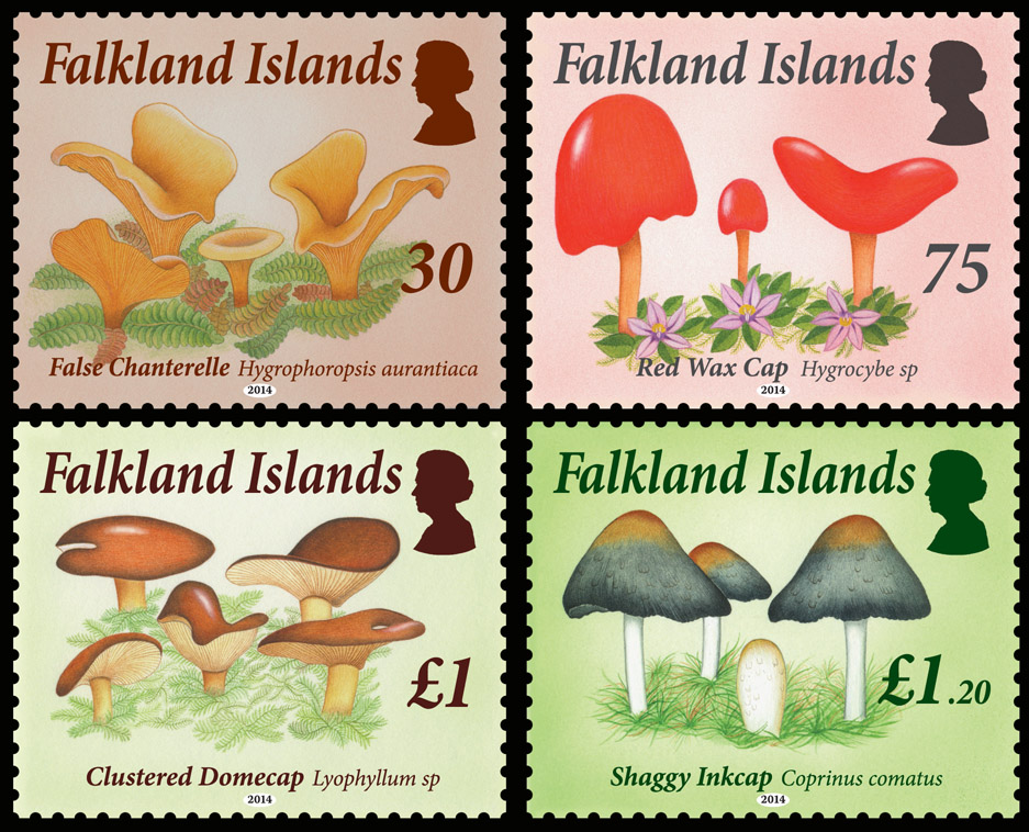 Falkland_Islands_New_Fungi.jpg